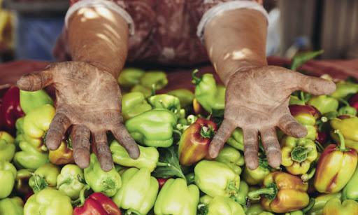 Yerelden Alışveriş Yapmak: Gıda