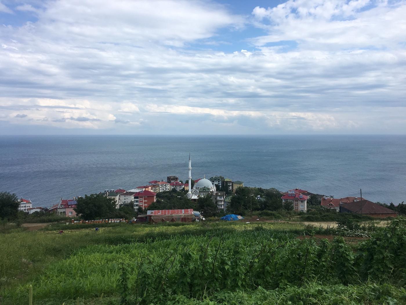 Orada Bir Köy Var Uzakta: TaTuTa